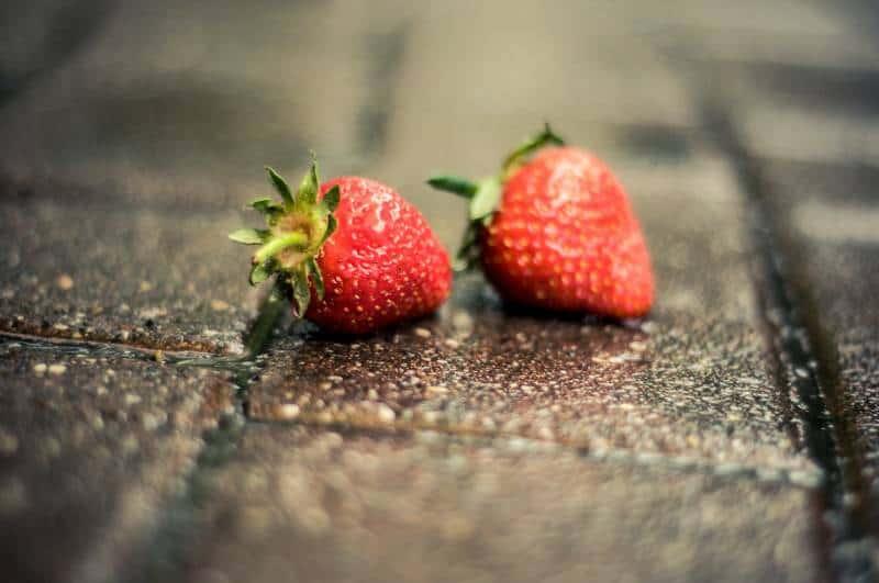 deux fraises sur un pavé de briques grises