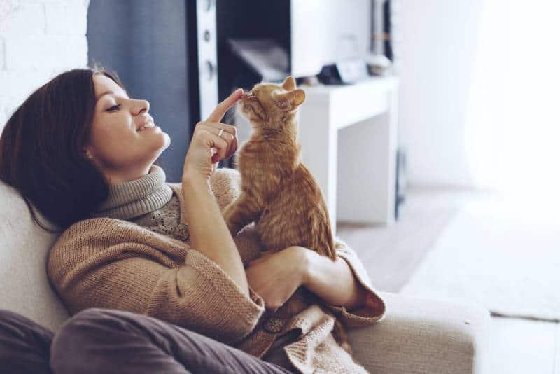 une femme portant un pull chaud se repose avec un chat sur le fauteuil