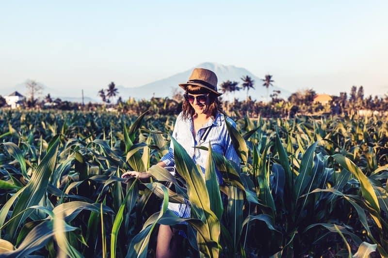 une femme avec un chapeau établit un champ