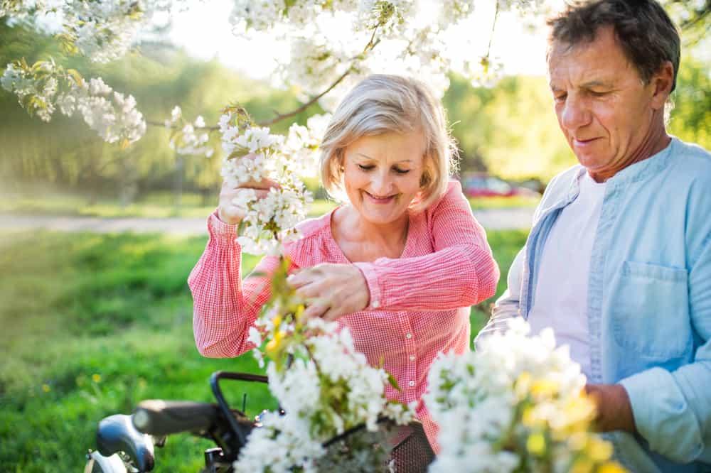Un beau couple de personnes âgées cueillant les branches en fleurs des arbres