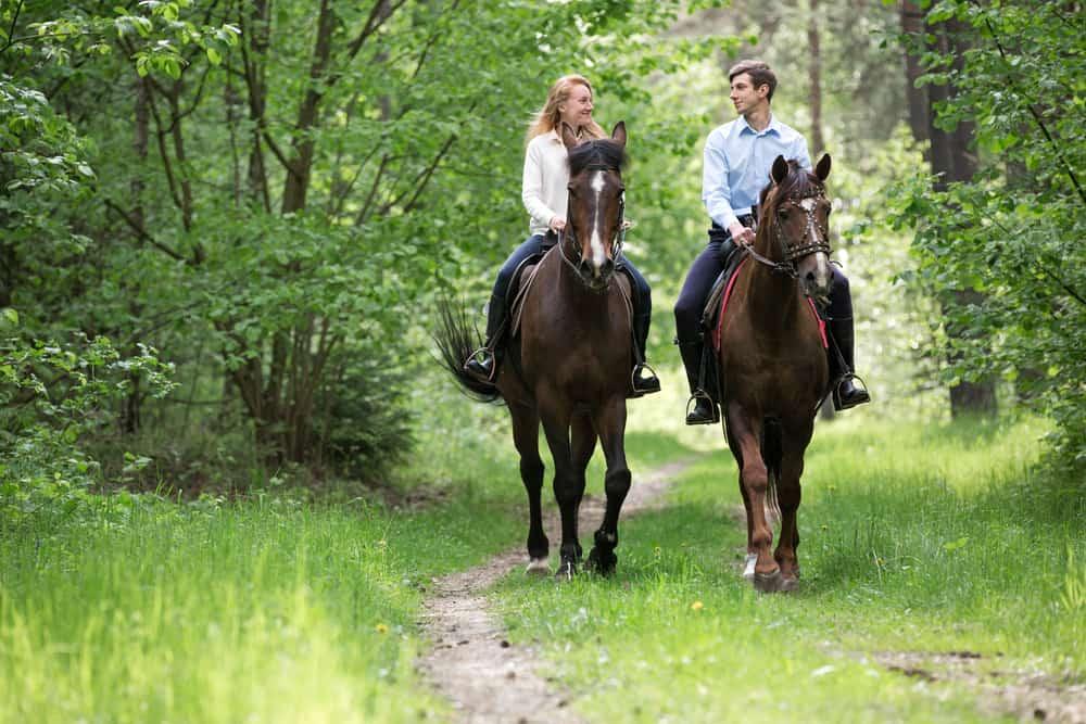 un couple amoureux monte à cheval dans les bois