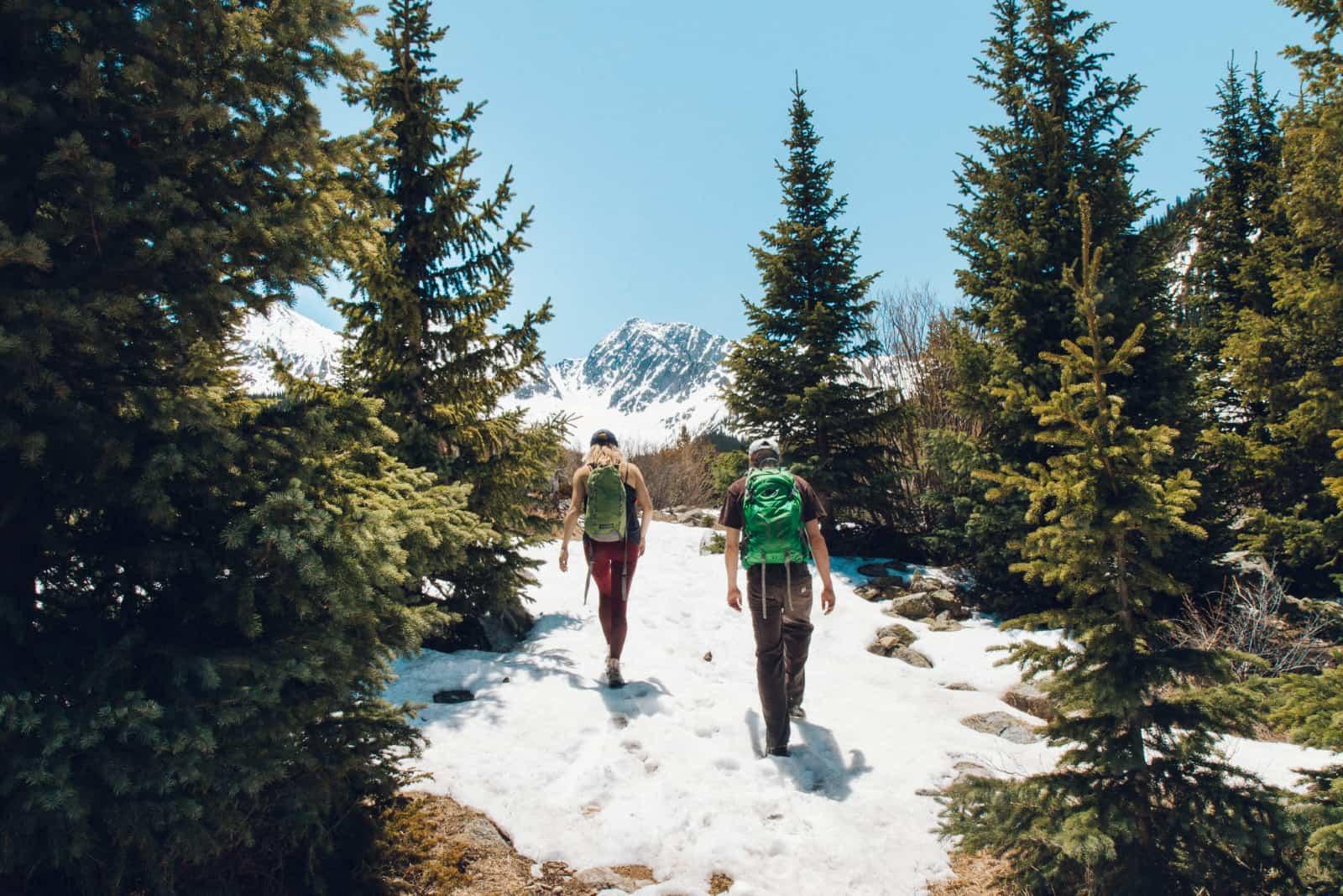 homme et femme avec des sacs à dos marchant dans la forêt