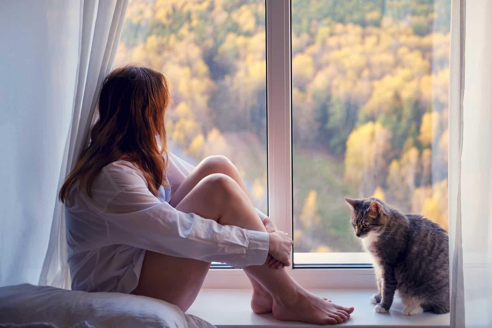 une femme imaginaire avec un chat assis près de la fenêtre